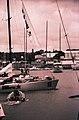 Volvo-Ocean-Race-2002-Auckland.jpg