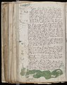 Voynich Manuscript (144).jpg