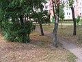 Włocławek-place of former war cemetery.jpg