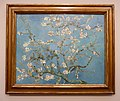WLANL - jankie - Amandelbloesem, Vincent van Gogh (1890).jpg