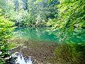 WLE 17 Faulenbacher Tal - Waldsee 2.jpg