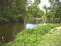 Waddon Ponds. - geograph.org.uk - 21875.jpg