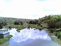 Wami River.jpg