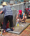 Washing the dog and the laundry at the waterfront, Peng Chau, Hong Kong.jpg