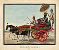 Watercolour painting on paper of Indradyumna seated in a carriage.jpg