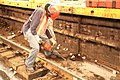 Weekend work 2012-08-20 13 (7823956746).jpg