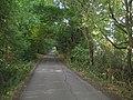 Welwyn, Holwell Hyde Lane - geograph.org.uk - 208192.jpg