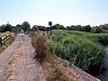 West Marsh Lane Crossing - geograph.org.uk - 205087.jpg