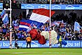 Western Bulldogs cheer squad.4.jpg