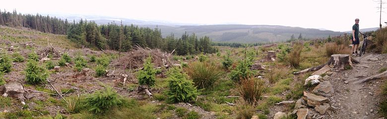 Wicklow Mountains Mountain Biking Panorama
