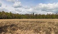Wijnjeterper Schar, Natura 2000-gebied provincie Friesland 001.jpg