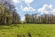 Wijnjeterper Schar, Natura 2000-gebied provincie Friesland 22.jpg