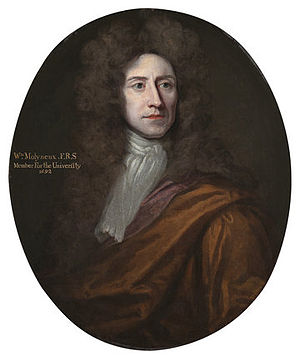 William Domville - William Molyneux, Domville's son-in-law, by Godfrey Kneller