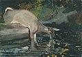Winslow Homer - Deer Drinking.jpg