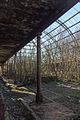 Winter Gardens, Springburn Park.jpg