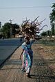 Woman carrying firewood.jpg