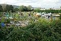 Woodland Road allotments, Cwmbran - geograph.org.uk - 1534922.jpg