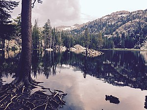 Alpine County, California - Woods-Lake-Sierra-Nevada-Alpine-Janine-Sprout