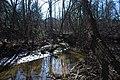 Woody creek 2 (40914791515).jpg
