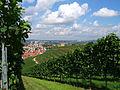 Y-Burg aus den Weinbergen gesehen.jpg