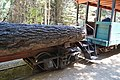 Yosemite Mountain Sugar Pine Railroad 35.jpg