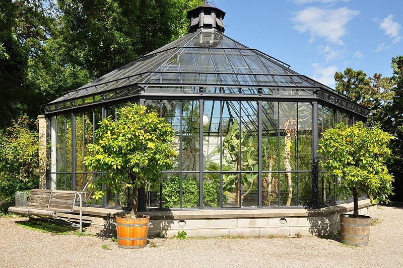 file z rich alter botanischer garten img 0684 jpg. Black Bedroom Furniture Sets. Home Design Ideas
