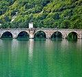 Zelena Drina.jpg