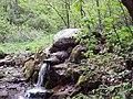 Zhiva voda, Bosnek.jpg