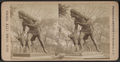 """Indian Hunter and Dog,"" Central Park, New York, from Robert N. Dennis collection of stereoscopic views.png"