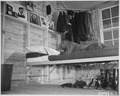 """Negro (air cadet) shown on a cot in his barracks studying as he gazes fondly at his collection of photos of his girl fr - NARA - 535832.tif"