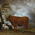 'A Young Bull in a Landscape' by Paulus Potter, 1647.jpg