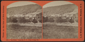 'Our Home,' Dansville, N.Y. - from Cottage St, from Robert N. Dennis collection of stereoscopic views.png