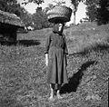 """Žena s """"kasiuənco"""" ali plenirjem na glavi. """"Kasiuənca"""" za prinašanje kosila na njivo, Zakraj 1954.jpg"""