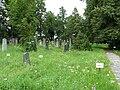 Židovský hřbitov (ČB) - pohled od branky.jpg