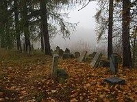 Židovský hřbitov v Puklicích.JPG