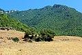 Ποδοχώρι - panoramio (13).jpg