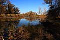 Вид на озеро в северном направлении - panoramio (1).jpg