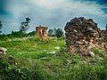 Гальшанскі замак 1.jpg