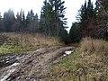 Дорога с полей, конец октября 2011 - panoramio.jpg