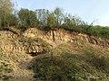 Обнажения палеозойских горных пород.jpg