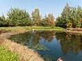 Озеро - panoramio (389).jpg