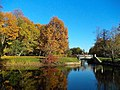 Осенний пейзаж на прудах Елагина острова.JPG