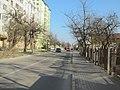 Початок вулиці Д. Дудаєва.jpg