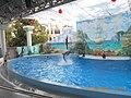 Сочинский дельфинарий парка «Ривьера». 78.jpg