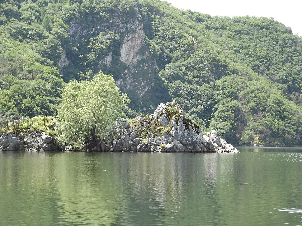 Специјални резерват природе Увац 1