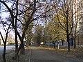 Улица Лизы Чайкиной - panoramio.jpg