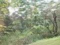 เที่ยวเขื่อนจุฬาภร - panoramio (4).jpg