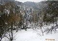 გაყინული მტკვარი - panoramio.jpg