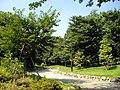 中野区立江古田の森公園 - panoramio.jpg