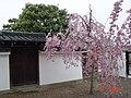 日本京都古蹟23.jpg